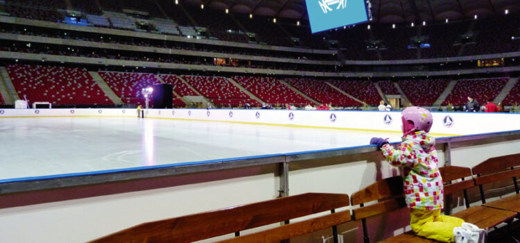 National Stadium Ice Rink