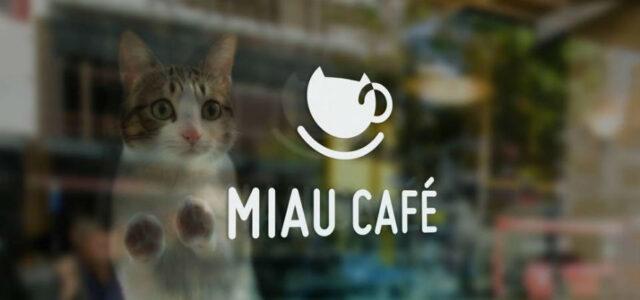 Miau Cafe
