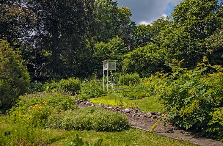 239_botanical_garden-05