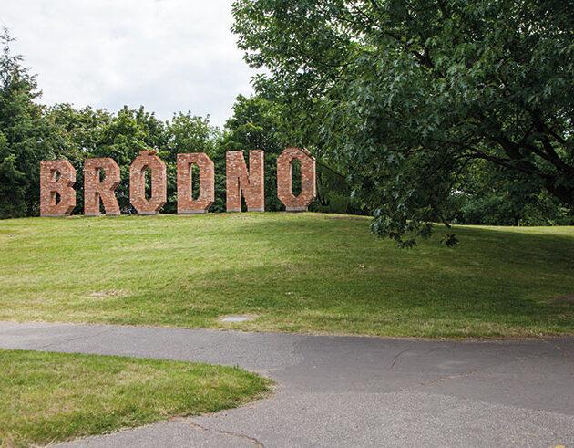 Bródno: A Walk Of Art