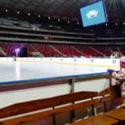 National Stadium Ice Rink