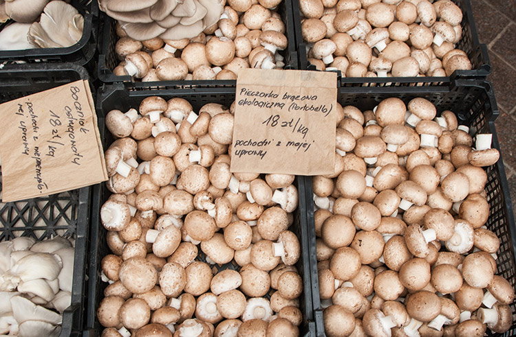 The village of Dąbrówki is where you'll usually find Tomek, the creator of Poland's original organic mushroom farm. Using horse manure, natural gypsum and straw, the Portobello and oyster mushrooms are cultivated all year round in Tomek's basement using a 41 day process. Check the pates, not to mention the ready-to-eat grilled mushrooms. Magic!